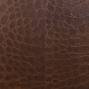 leather veneto seppia 600 450 4